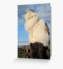 The Queen of All She Surveys Greeting Card