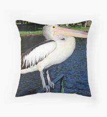 Pelican, River Torrens, Adelaide Throw Pillow