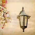 Black Lantern with Dried Flowers. by eyeshoot
