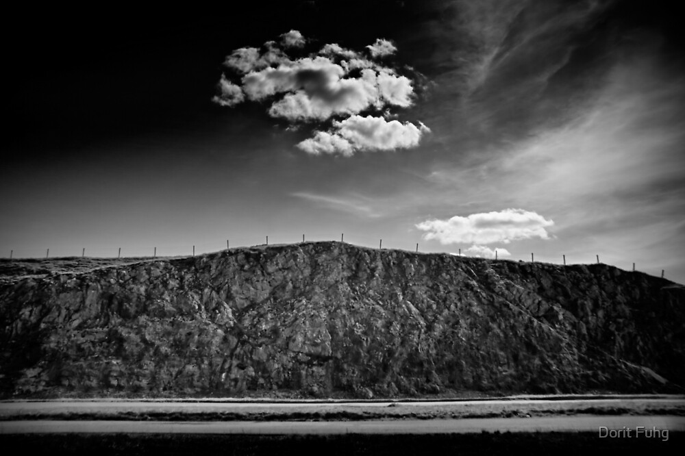 the cloud by Dorit Fuhg