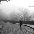 Echoes by ShorehamBoy