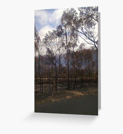 Woodside 3 ~ Black Saturday Greeting Card