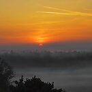 A New Day by relayer51