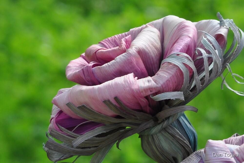 paper flower by Dan Togea