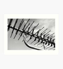 tv antenna Art Print