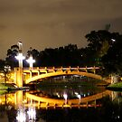 Adelaide, a bridge at night by todski2
