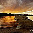 Driftwood Sunset by Stevej46