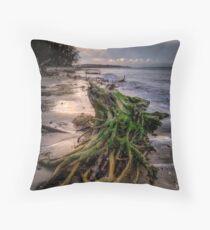 Stumpy On The beach Throw Pillow