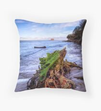 Stumpy On The beach 2 Throw Pillow