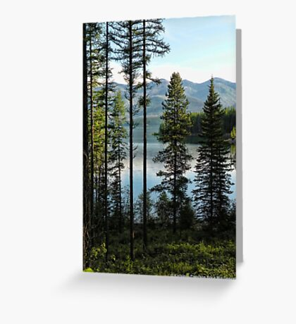 Murray Bay (Montana, USA) Greeting Card