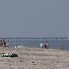 Beach and Pier by Karl R. Martin