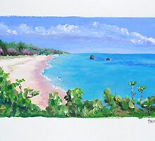 Warwick Long Bay, Bermuda by triciamary