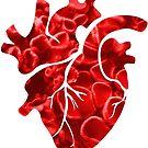 Heart by shiro