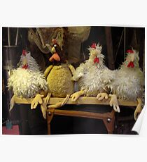 Humourous Chickens Poster