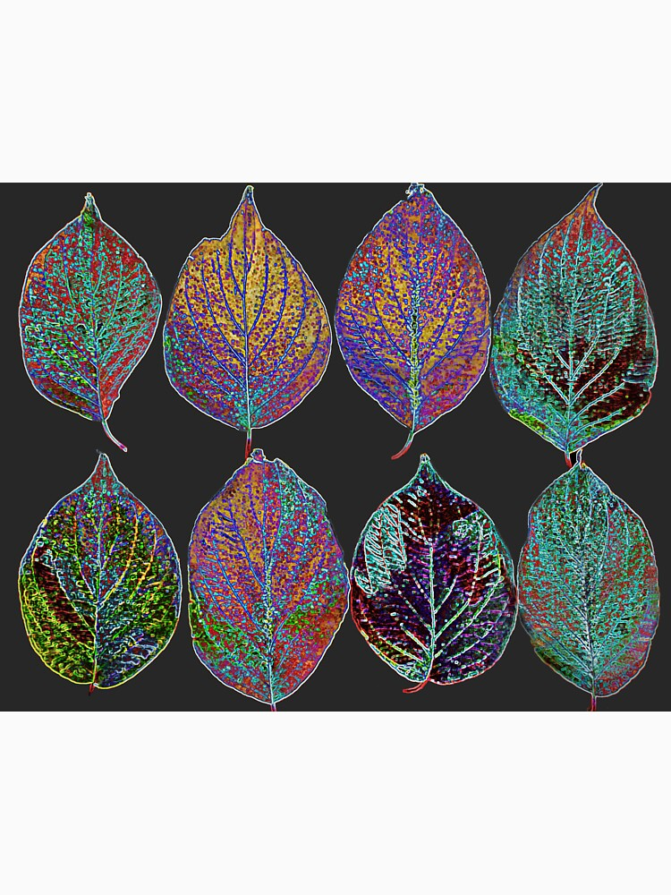 Glowing Pattern of Leaves by beatrice11