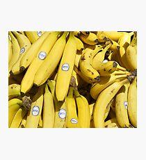 Food - bananas (Bonita #4011) Photographic Print