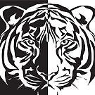 Black & White Tiger by Sarah Switalski
