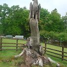 Eagle tree carving statue....Inverary Scotland by marieangel