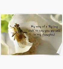 Flying Visit greeting card Poster