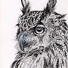 Owl In Ink by Hannah Taylor