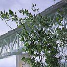 bridge series 2 by Bruce  Dickson