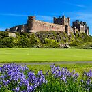 Bamburgh Castle with bluebells. by DanielDent
