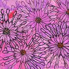 Afrikanisches Gänseblümchen, Kap-Gänseblümchen, rosa Blumen, Blumenkunst von clipsocallipso