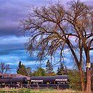 Rural Train Yard by rocamiadesign