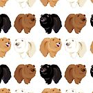 Chow Chow by SumiIllustrator