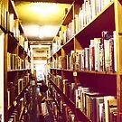 Corridor Of Knowledge by Scott Braun