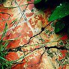 Secret Garden Path by eleveneleven
