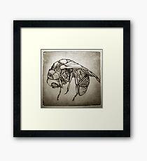 Zinc fly Framed Print