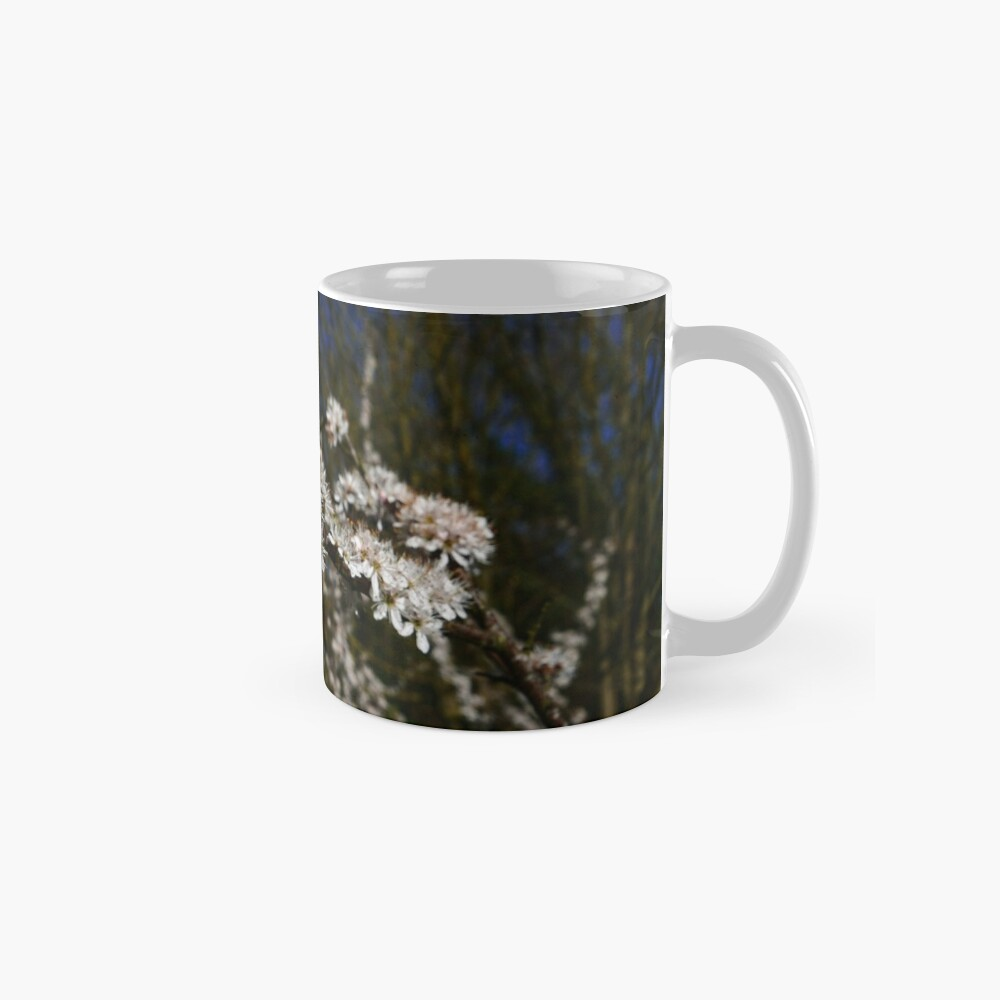 Blackthorn (Prunus spinosa) Mug