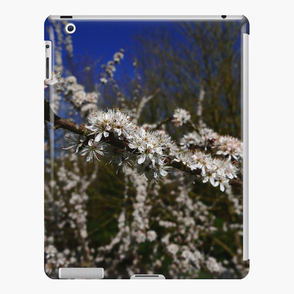 Blackthorn (Prunus spinosa) iPad Case & Skin