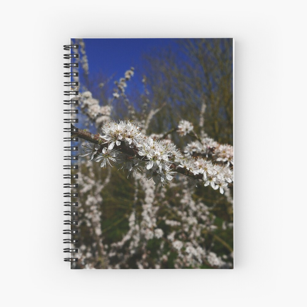 Blackthorn (Prunus spinosa) Spiral Notebook