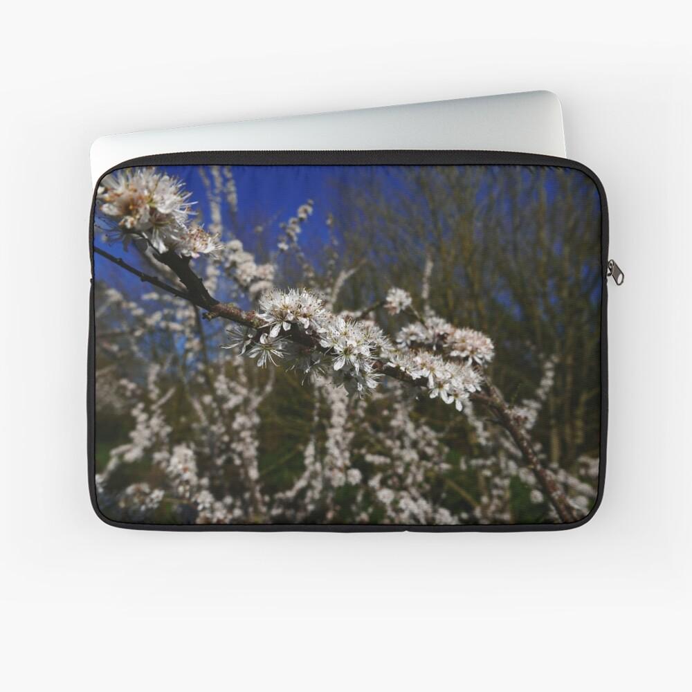 Blackthorn (Prunus spinosa) Laptop Sleeve