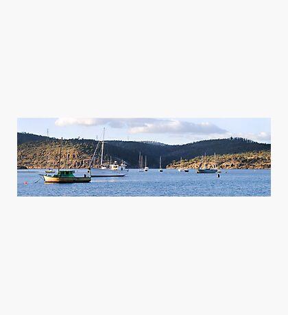 New Town Bay - Hobart Photographic Print