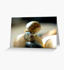 Garden Snail Greeting Card