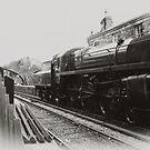Goathland - North Yorks Moors Railway by Trevor Kersley