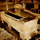 The horse trough by pennyswork