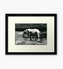the gray man Framed Print