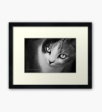 Demon From Within. Framed Print