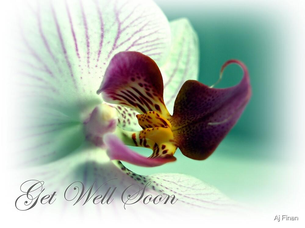 Phalaenopsis  Orchid Get Well Card by Aj Finan