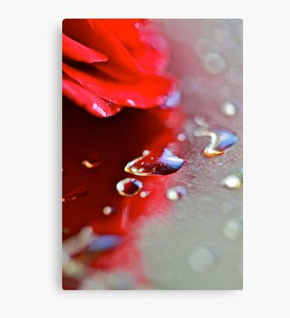 November  rain . Guns N' Roses  & (Umbrellas of Cherbourg) by Brown Sugar . F**Favorites: 10 Views: 1106 !.  GRACIAS AMIGOS !!! Featured Safe Haven Group. Canvas Print