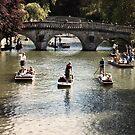 A Cambridge Summer by Sue Frank