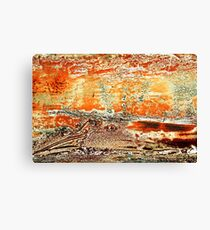 The Searing Summer Heat Canvas Print
