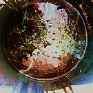 paint bucket photographs #2 by Anthony DiMichele