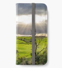 Shining at greens iPhone Wallet/Case/Skin