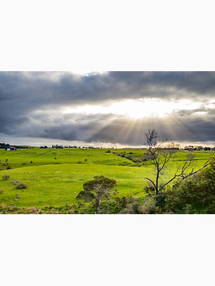 Shining at greens by aiinojani
