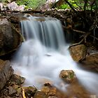 Dead Horse Creek by punchdrunklove